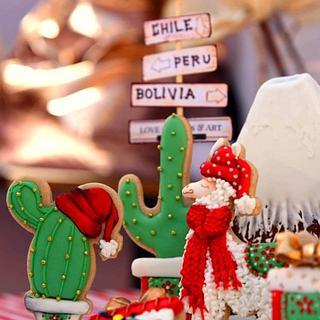 """Christmas """"Andina"""""""