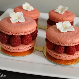 Individual Macarons Cakes