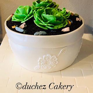 Flower pot cake with succulent sugar flowers