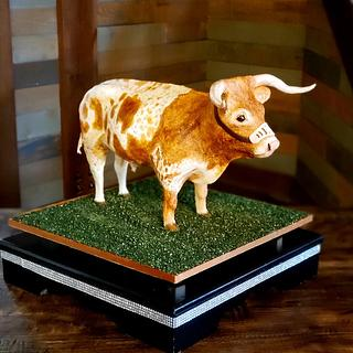 Bevo the Longhorn