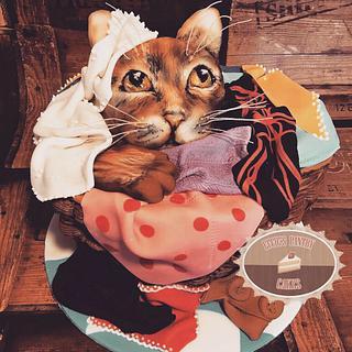 Cat in washing basket