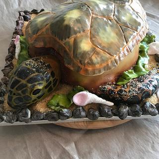 Sea turtle illusion cake - Cake by Helen35
