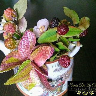 Blackberries and exotic leaves