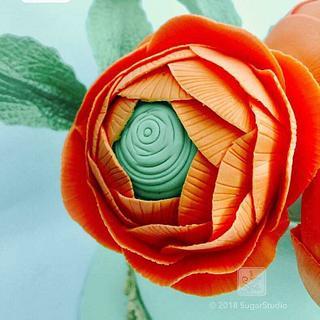 Gumpaste Ranunculus