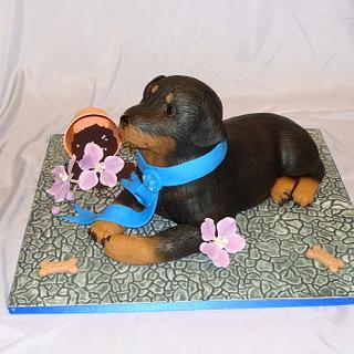 Rotti Puppy - Cake by Naturepixie