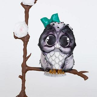 Cutie Owl