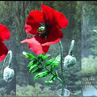 Sugar flowers...Poppy