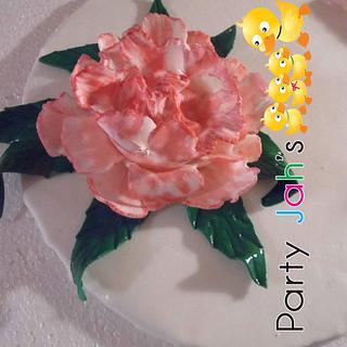 First Peony flower