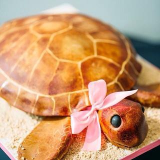 Sea turtle cake