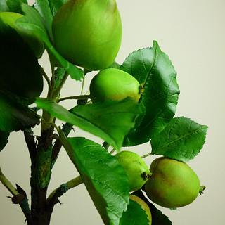 Gumpaste apples - Cake by Shenelle Robson