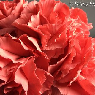 Gumpaste carnations - Cake by Shenelle Robson