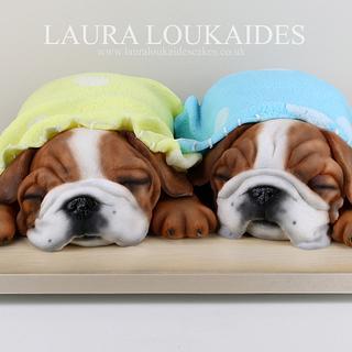 Winnie & Milo - The Sleepy Bulldogs