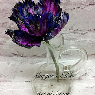'Black Tulip'