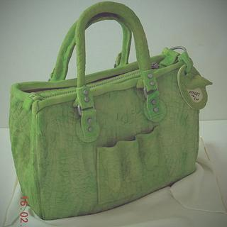 alligator skin bag