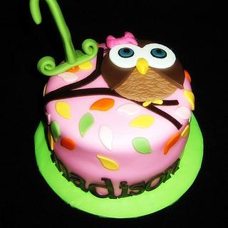 Owl 1st Birthday Cake and Cupcakes