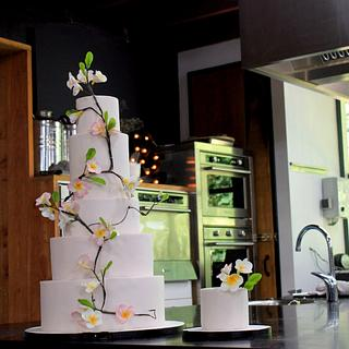 double sided wedding cake - Cake by Sabsy Cake Dreams