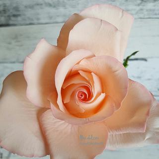 Sugar flower rose