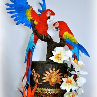 Scarket Macaws