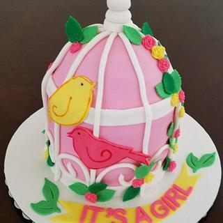 Bird cage for baby shower  - Cake by Niyati