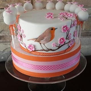 Hand painted Bird cake and cake pops