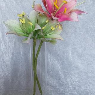 Amaryllis  - Cake by Unusual cakes for you