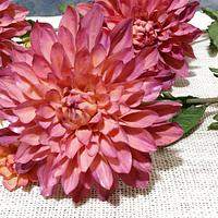 Sugar flowers ricepaste dahlia