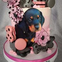 Bday dog  by Kaliss
