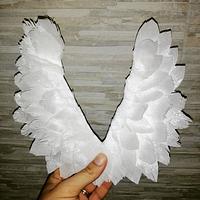 Waffer paper wings