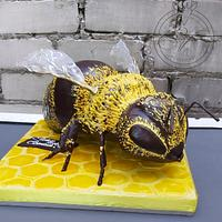 Bee cake by Victoria Zagorodnya
