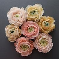 Learn how to create Wafer Paper Ranunculus by Anna Astashkina