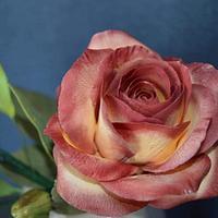 Rose from gum paste by StelaKoleva