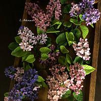 Gumpaste-Fondant Lilac!