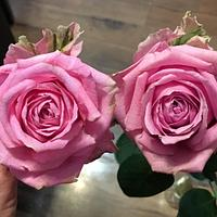 Wafer paper rose vs real rose