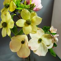 Bean paste dogwood flowers with sugar magnolia.