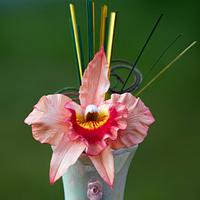 Gumpaste cattleya orchid