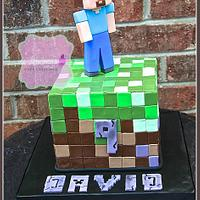 Minecraft for David!
