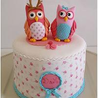 Hand painted Shabby Owl Cake
