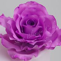 Sugar paste rose by Tatyana