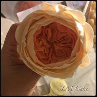Juliet Roses in sugar open and closed