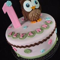 Hoot of a 1st birthday! Owl cake