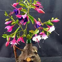 Gumpaste Fuchsia