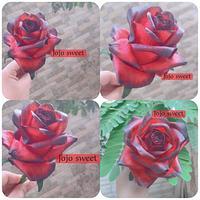 Fondant flower 🌹