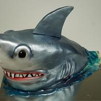 Shark Cake, London