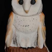 """Owl """"effraie"""""""