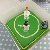 Cricket fun