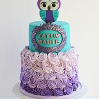Teal and purple owl cake