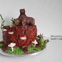 Bear cake by Judit