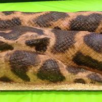Burmese Python by Ali Boren