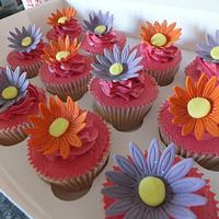 bright gerbera cuppies