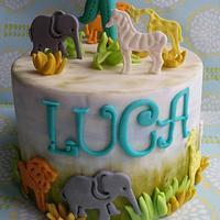 Luca 1st year :)